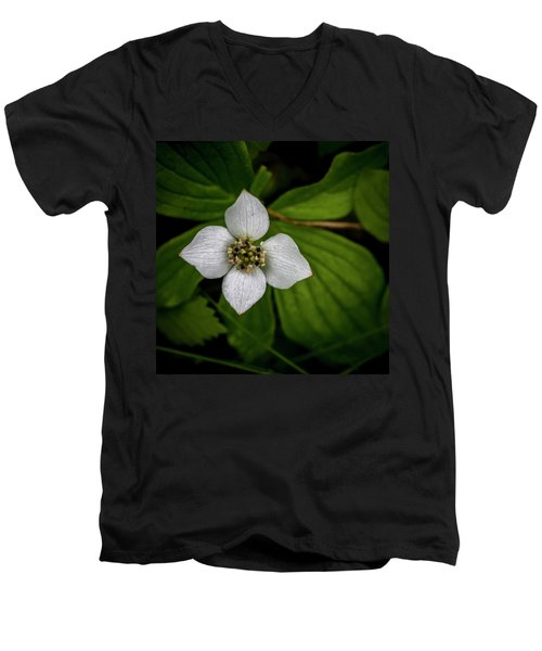 Men's V-Neck T-Shirt featuring the photograph Bunchberry Dogwood On Gloomy Day by Darcy Michaelchuk