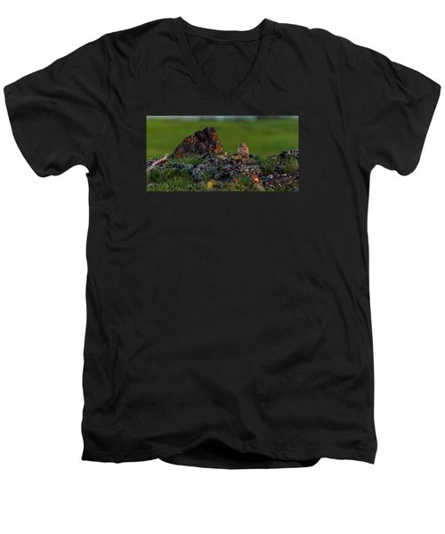 Men's V-Neck T-Shirt featuring the photograph Burrowing Owl In Cactus #1 by Yeates Photography