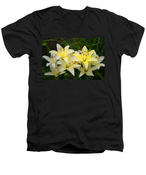 Men's V-Neck T-Shirt featuring the photograph Buttercreams by Kathryn Meyer