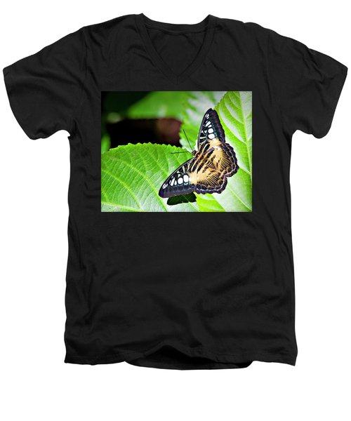Butterfly 13a Men's V-Neck T-Shirt