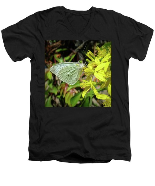 Butterfly Feasting On Yellow Flowers Men's V-Neck T-Shirt