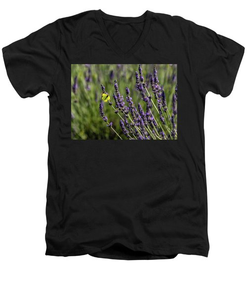 Butterfly N Lavender Men's V-Neck T-Shirt