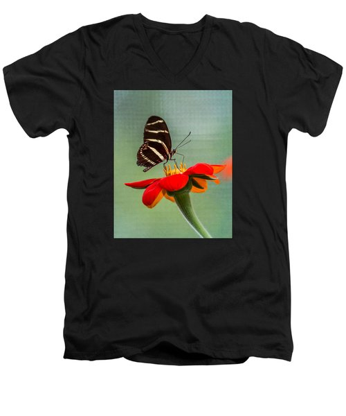 Butterfly Zebra Longwing On Zinnia Men's V-Neck T-Shirt