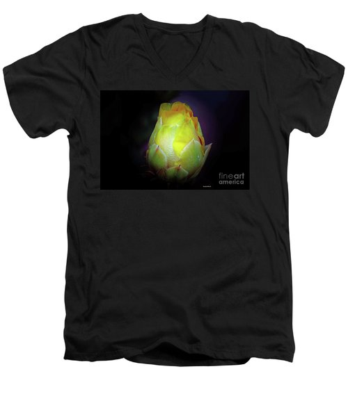 Cactus Flower 7 Men's V-Neck T-Shirt