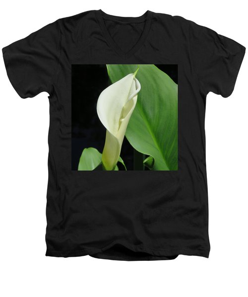 Cala Lily  Men's V-Neck T-Shirt