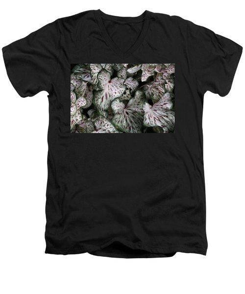 Men's V-Neck T-Shirt featuring the photograph Caladium Leaves by Debi Dalio