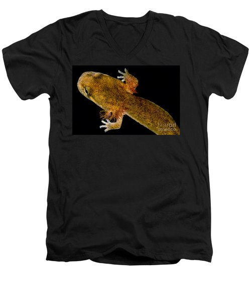 California Giant Salamander Larva Men's V-Neck T-Shirt by Dant� Fenolio