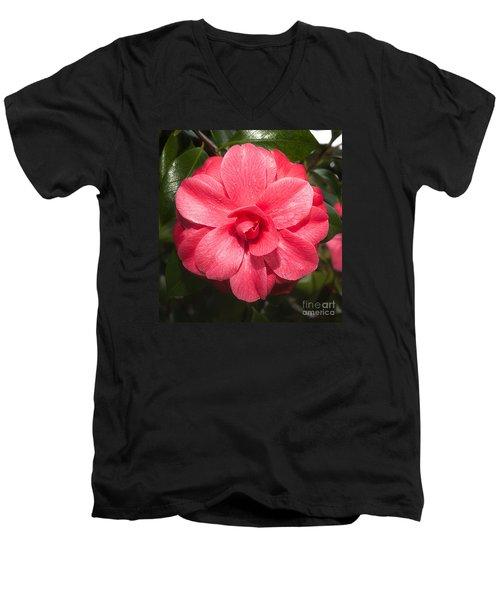 Camellia Japonica ' Mathotiana Rosea' Men's V-Neck T-Shirt