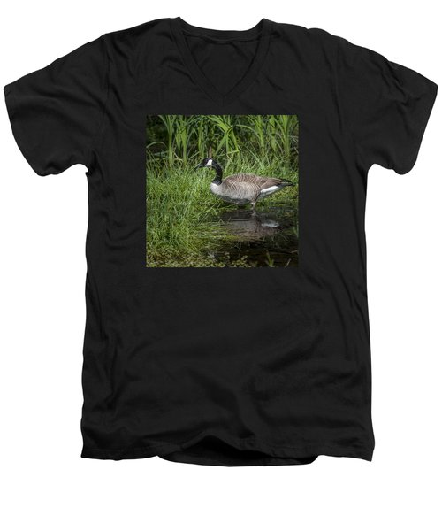 Men's V-Neck T-Shirt featuring the photograph Canada Goose by Tyson and Kathy Smith
