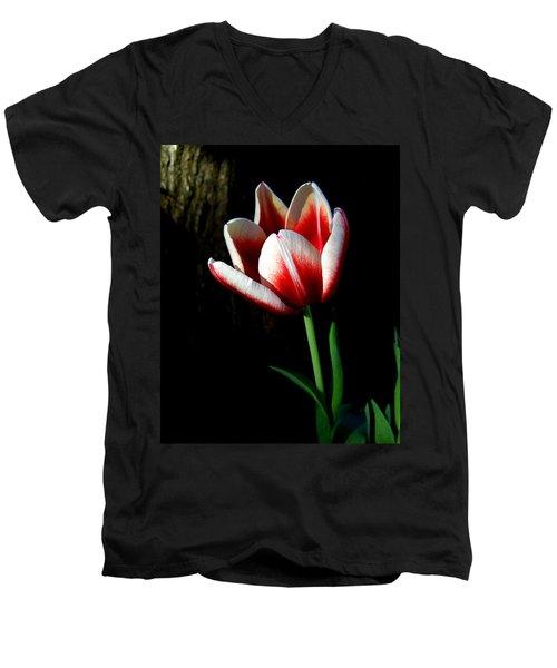 Candy Cane Tulip Men's V-Neck T-Shirt