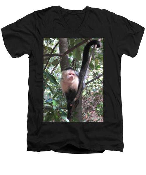 Capuchin Monkey 4 Men's V-Neck T-Shirt