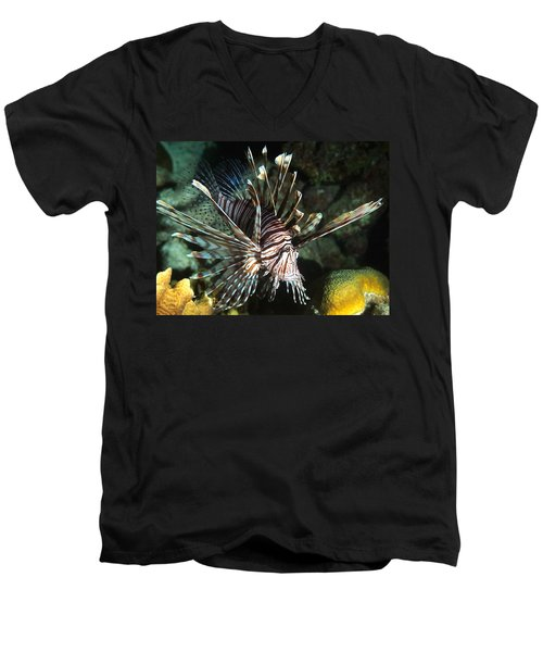 Caribbean Lion Fish Men's V-Neck T-Shirt