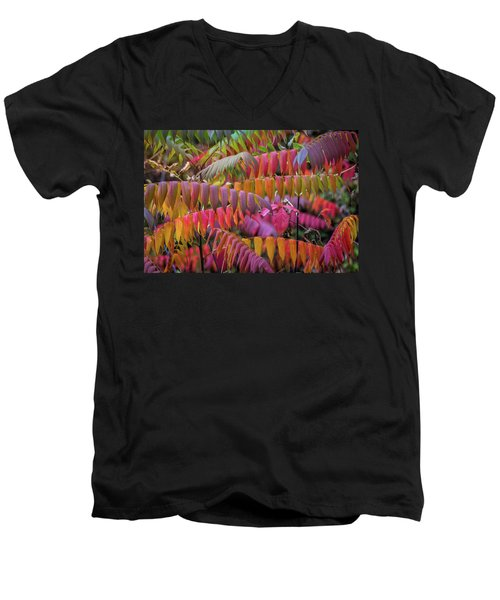 Men's V-Neck T-Shirt featuring the photograph Carnival Of Autumn Color by Bill Pevlor