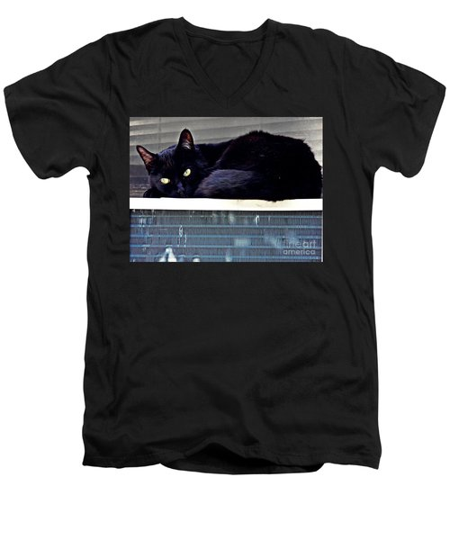 Cat Conditioner Men's V-Neck T-Shirt