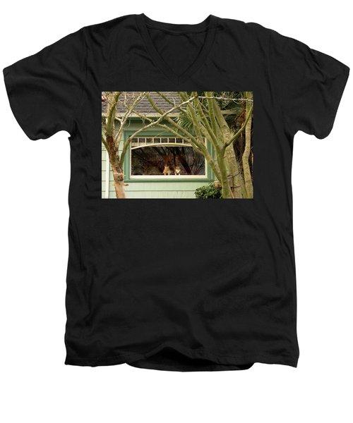 Cat Pals Waiting Men's V-Neck T-Shirt