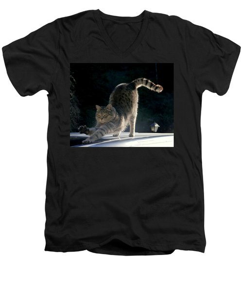 Men's V-Neck T-Shirt featuring the photograph Cat Yoga by Peter Mooyman