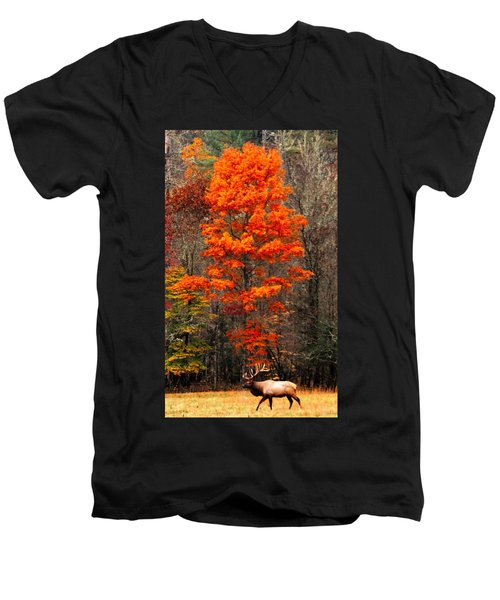 Cataloochee Color Men's V-Neck T-Shirt