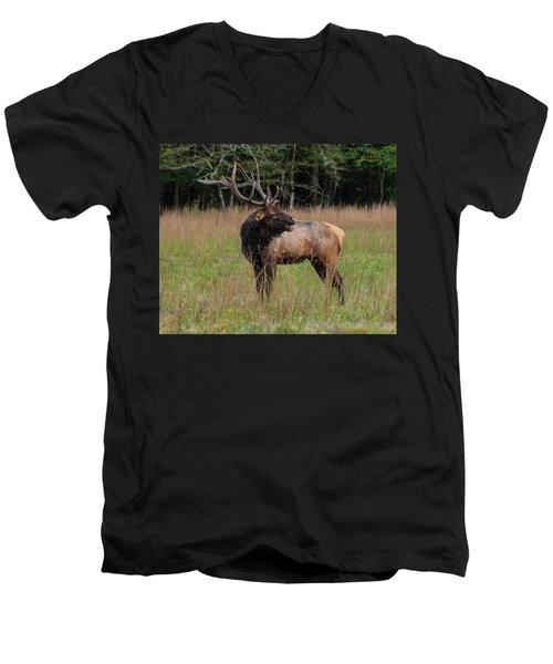 Men's V-Neck T-Shirt featuring the digital art Cataloochee Valley Elk  by Chris Flees