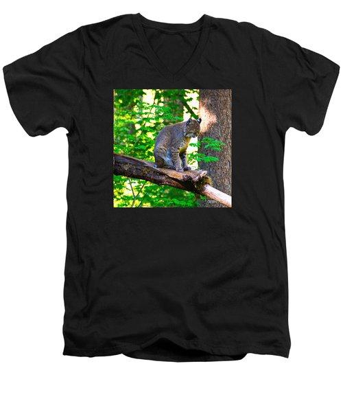 Catnap Men's V-Neck T-Shirt by Ansel Price