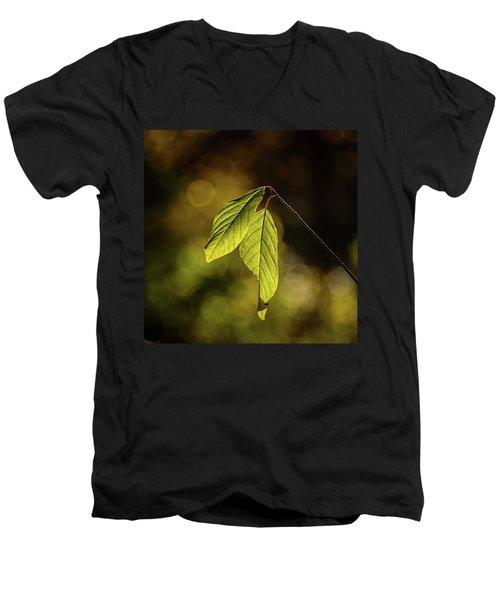 Caught In The Light Men's V-Neck T-Shirt