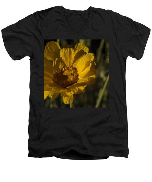 Cave Creek Beauty And Shadows Men's V-Neck T-Shirt by Carolina Liechtenstein