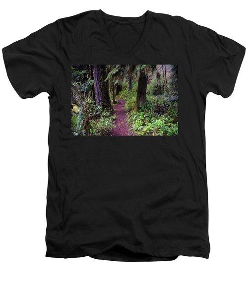 Cedar Creek Trail #3 Men's V-Neck T-Shirt