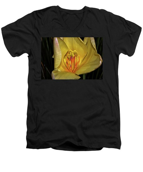 Centerpiece - Grand Opening Yellow Tulip 001 Men's V-Neck T-Shirt