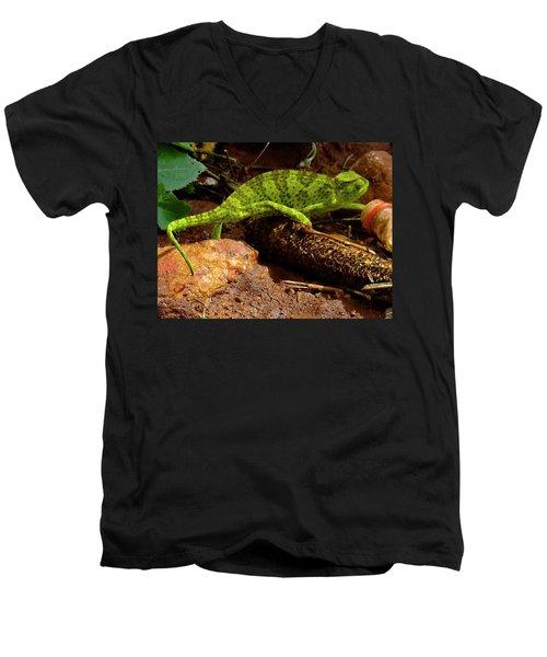 Chameleon Struts His Stuff Men's V-Neck T-Shirt by Exploramum Exploramum