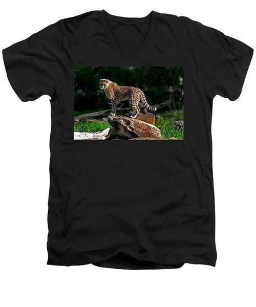 Cheetah Cub Finds Her Pride Rock Men's V-Neck T-Shirt