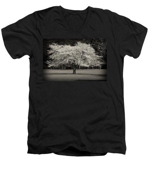 Cherry Blossom Tree - Ocean County Park Men's V-Neck T-Shirt