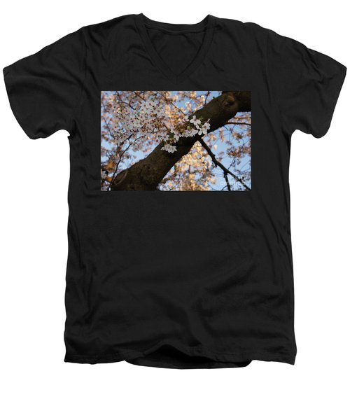 Cherry Blossoms Men's V-Neck T-Shirt by Megan Cohen