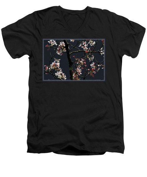 Cherry Blossoms On Dark Bkgrd Men's V-Neck T-Shirt