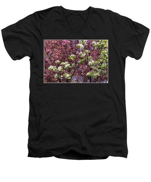 Cherry Tree And Pear Blossoms Men's V-Neck T-Shirt by Dora Sofia Caputo Photographic Art and Design