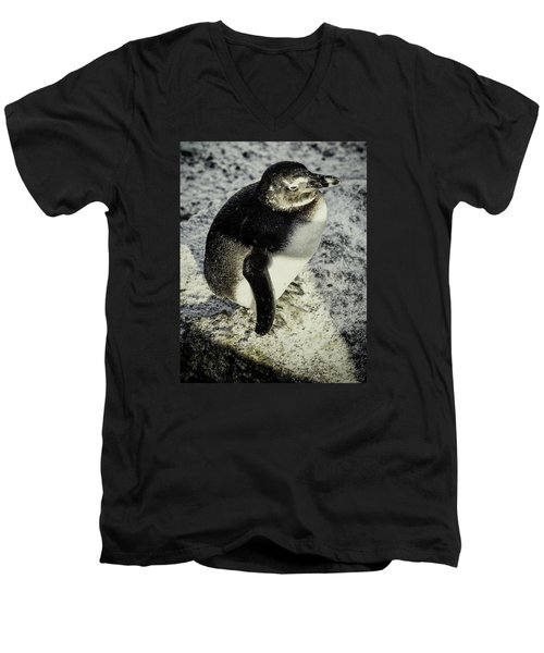 Men's V-Neck T-Shirt featuring the photograph Chillypenguin by Chris Boulton