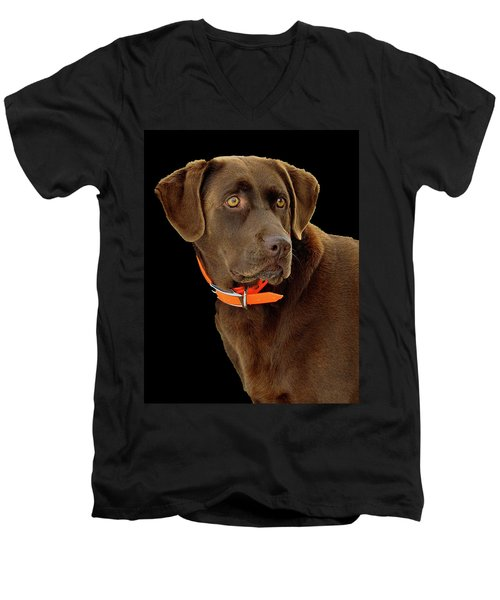 Chocolate Lab Men's V-Neck T-Shirt