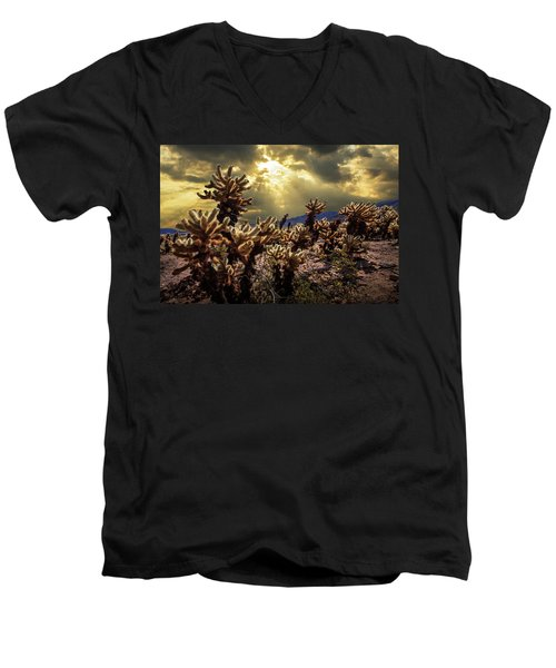 Men's V-Neck T-Shirt featuring the photograph Cholla Cactus Garden Bathed In Sunlight In Joshua Tree National Park by Randall Nyhof