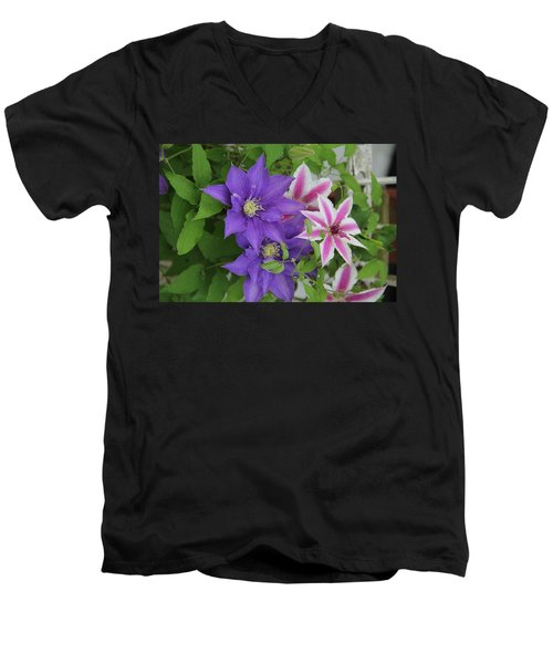 Clematis Purple And Pink White Men's V-Neck T-Shirt