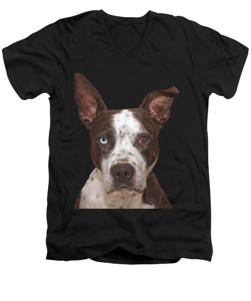 Men's V-Neck T-Shirt featuring the photograph Cleo  by Brian Cross