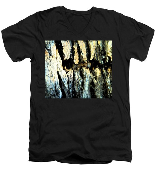 Men's V-Neck T-Shirt featuring the photograph Cliff Dwellings by Lenore Senior