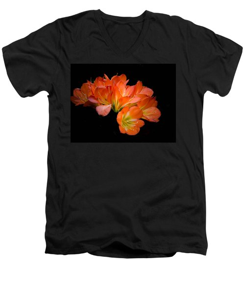 Clivia Flora Men's V-Neck T-Shirt by Bruce Pritchett