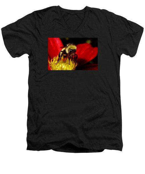 Close Up Bee Men's V-Neck T-Shirt