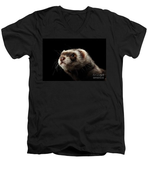 Men's V-Neck T-Shirt featuring the photograph Closeup Portrait Of Funny Ferret Looking At The Camera Isolated On Black Background, Front View by Sergey Taran