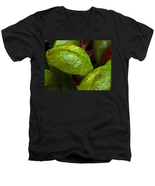 Men's V-Neck T-Shirt featuring the photograph Cobra Lily Love by Suzy Piatt