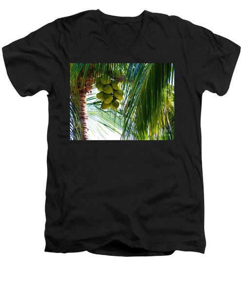 Coconuts Men's V-Neck T-Shirt