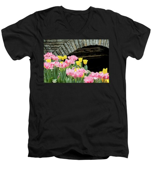 Color Along The Pond Men's V-Neck T-Shirt