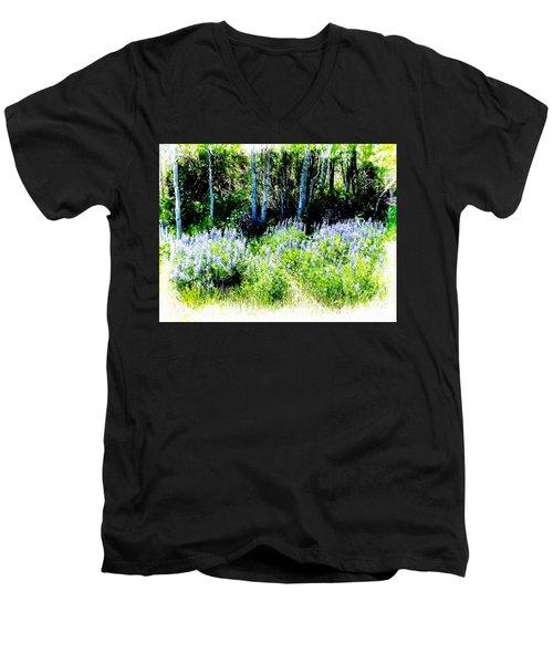 Colorado Apens And Flowers Men's V-Neck T-Shirt by Joseph Hendrix
