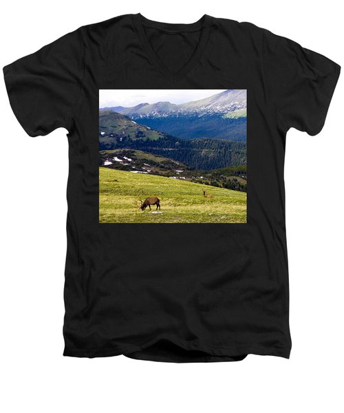 Colorado Elk Men's V-Neck T-Shirt