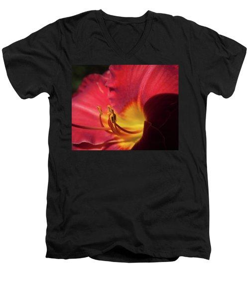Colorful Cobras Men's V-Neck T-Shirt