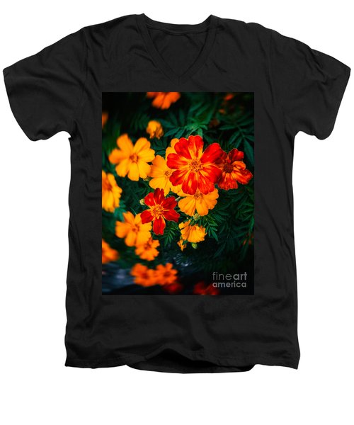 Men's V-Neck T-Shirt featuring the photograph Colorful Flowers by Silvia Ganora