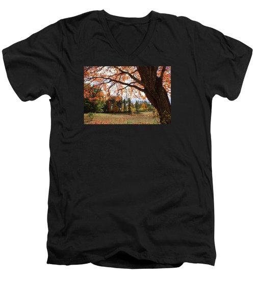 Colors Of Fall Men's V-Neck T-Shirt